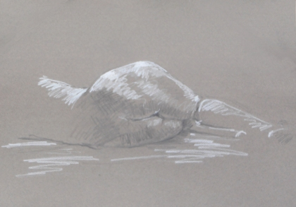 Figure Drawing #32. Pencil and white conté pencil on warm gray  pastel paper.